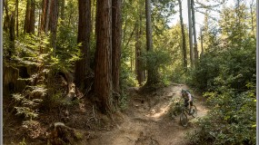 Classic Santa Cruz Mountain Biking