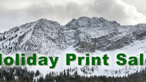 Holiday Fine Art Photography Sale