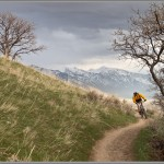 Mountain Bike Photos: Spring Singletrack Above Salt Lake City