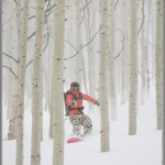 Ski and Snowboard Photos: Dodging Aspens