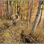Mountain Bike Photos: Fall Singletrack In Park City, Utah