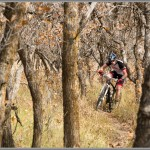 Mountain Bike Photos: October In the Wasatch Foothills