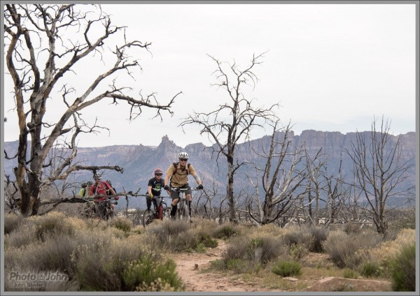 Mountain Bike Photos: Group Ride On the Guacamole Trail