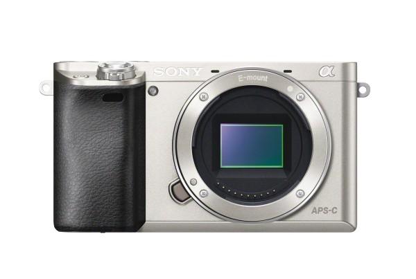 Sony Alpha A6000 Sensor