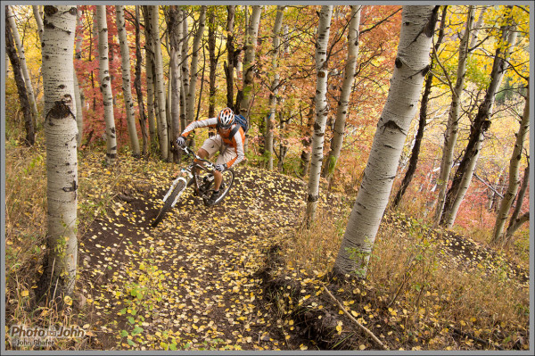 Park City Fall Aspens - Fine Art Mountain Bike Photography