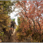 Mountain Biking Through Park City Fall Foliage - Best Photos of 2016