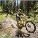 Mountain Bike Wheelie - Best Photos of 2016