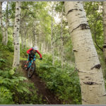 Wow Trail Mountain Biker - Best Photos of 2016