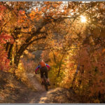 Salt Lake City Fall Color Singletrack - Best Adventure Photos of 2017
