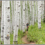Steamboat Springs Aspen Singletrack - Best Adventure Photos of 2017
