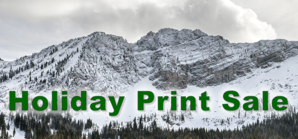 Holiday Fine Art Print Sale